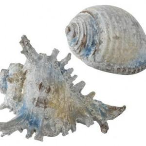 Set de 2 obiecte decorative Meneor