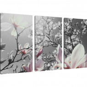 "Tablou ""Magnolie"", 3 piese, panza, 80 x 120 x 1,8 cm"