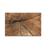 Tablou 'Cross section of Tree Trunk Rings', 4 piese, panza, maro, 80 x 120 x 2 cm