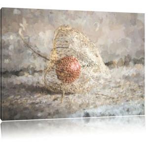 Tablou Physalis, gri, 40 x 60 cm