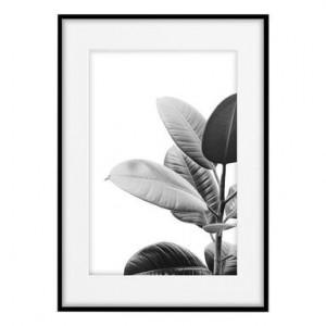 Tablou Plant , 30 x 40 cm
