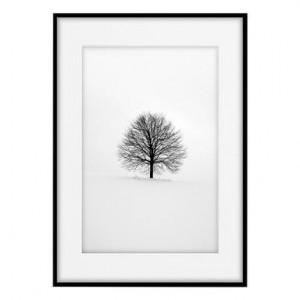 Tablou Tree, 50x70 cm