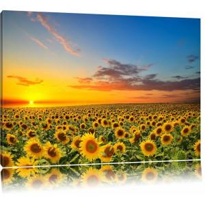 """Tablou """"Lan de floarea-soarelui"""", galben/albastru, 80 x 120 cm"""