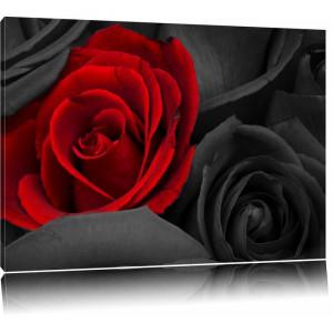 Tablou cu trandafiri, panza, 60 x 80 x 1,8 cm