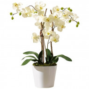 Orhidee artificiala in ghiveci, alb