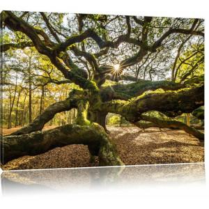 """Tablou """"Arbore gigantic ramificat"""", maro/verde, 80 x 120 cm"""