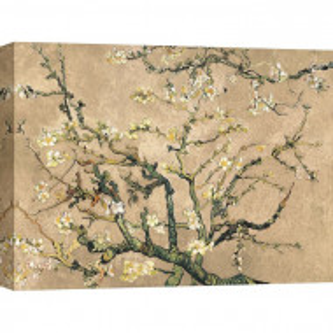 """Tablou """"Flori de migdale"""", bej/taupe, 60 x 80 cm"""