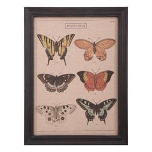 Tablou Butterfly III