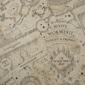 Tapet Warner Bros Marauders Map, 1000cm x 52cm