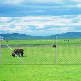Gard din oțel galvanizat cu suporturi pivotante pentru stâlpi 25 x 1 m