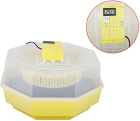 Incubator Electric Cleo - 5 cu Termometru - 647170