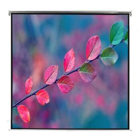 Ecran proiecție manual 160 x 90 cm alb opac 16:9 de tavan sau perete