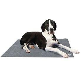 Scruffs & Tramps Pătură termică pentru câine Gri Mărime XL