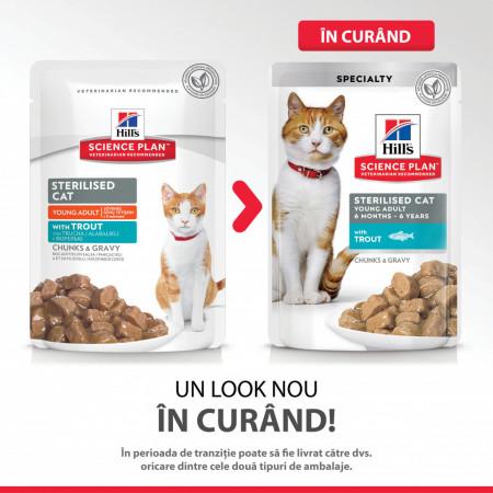 Hill's SP Feline Young Adult Sterilised cu Păstrăv 85 g (pliculeț)