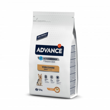 Advance Dog Yorkshire Terrier