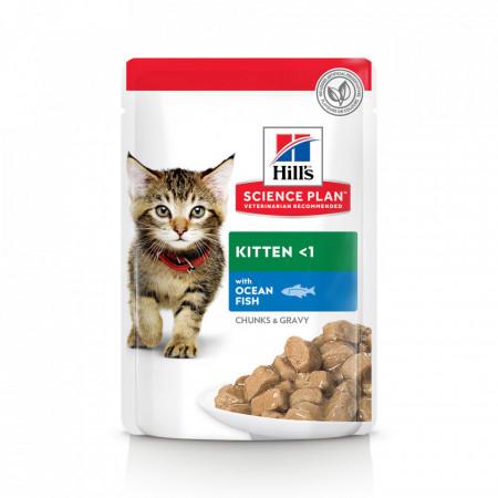 Hill's SP Kitten hrana pentru pisici cu pește oceanic