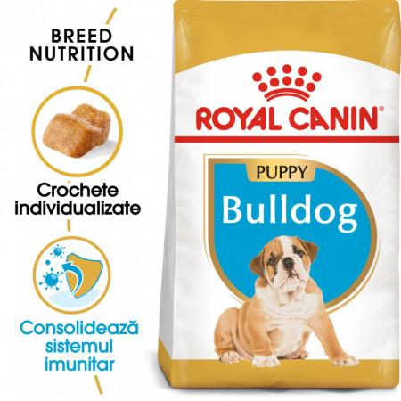 Hrana uscata caini ROYAL CANIN Bulldog Puppy