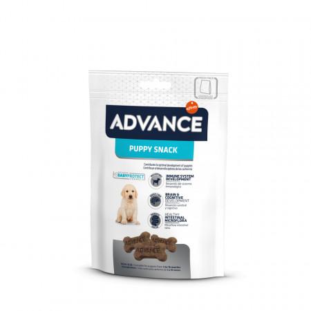 Advance Dog Puppy