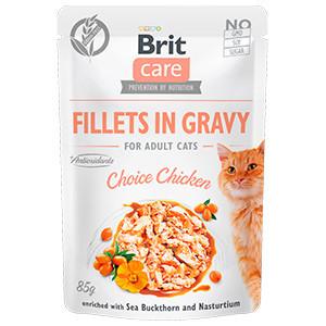 BRIT CARE CAT FILLETS IN GRAVY CU PUI