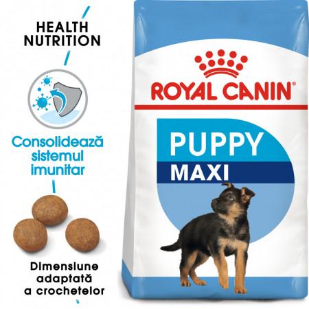 Hrana uscata caini ROYAL CANIN Maxi Puppy