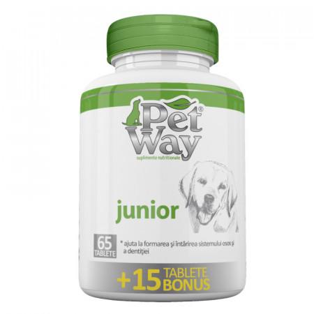 Supliment nutritional pentru cainii aflati in perioada de crestere