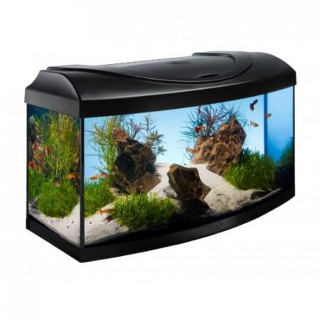 Acvariu negru Diversa Curb 80x35x40 cm 112 Lare un design modern, perfect pentru acvaristii incepatori.