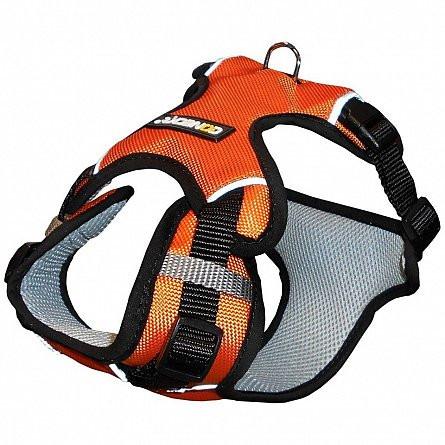Ham sport Coneck't - Mar. S portocaliu