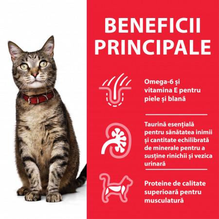 Hill's SP Feline Adult cu Pui 82 g (conservă)