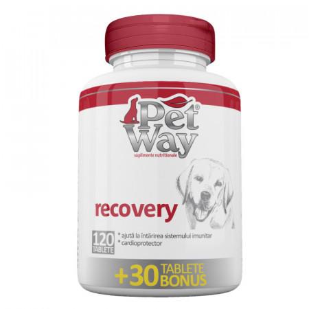 Petway Recovery Suplimentnutritivpentru intarirea sistemului imunitar al cainilor