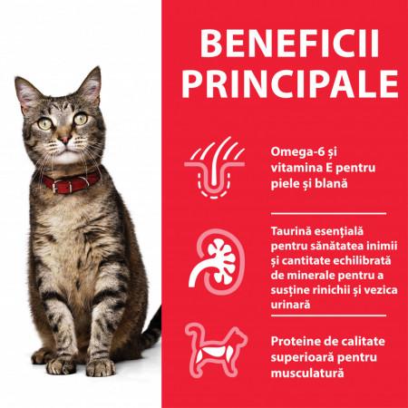 Hill's SP Feline Adult cu Ton 3 kg