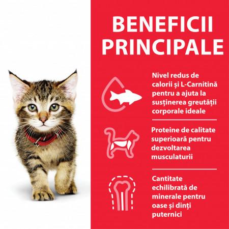 Hill's SP Feline Kitten Curcan 85 g (pliculeț)