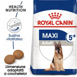 Hrana uscata caini ROYAL CANIN Maxi Adult 5+