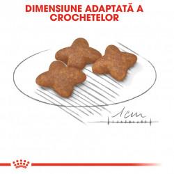 Hrana uscata caini ROYAL CANIN Mini Adult dimensiune adaptata a crochetelor