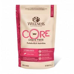 Hrana uscata pentru pisici Wellness Core Dry Sterilised cu somon 300 g