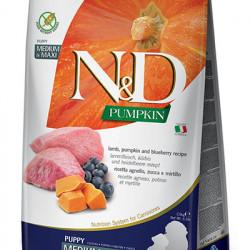 N&D Dog Grain Free Pumpkin Medium Large Puppy Miel 2,5 kg