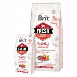 Brit Fresh Beef and Pumpkin Puppy Large 12 kg