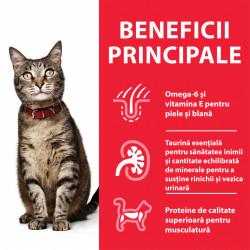 Hill's SP Feline