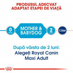 Hrana uscata caini ROYAL CANIN Maxi Starter Mother & Babydog produsul adaptat etapei de viata