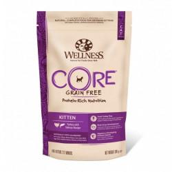 Hrana uscata pentru pisici Wellness Core Kitten Dry cu curcan si somon 300 g