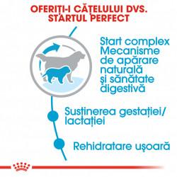 Hrana uscata caini ROYAL CANIN Giant Starter Mother & Babydog 15 kg start perfect