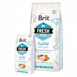 Brit Fresh Large Adult cu pește și dovleac 2,5 Kg