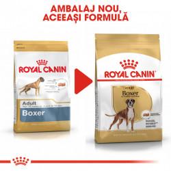 Hrana uscata caini ROYAL CANIN Boxer Adult ambalaj nou