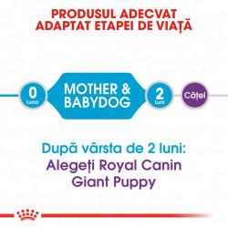 Hrana uscata caini ROYAL CANIN Giant Starter Mother & Babydog 15 kg produsul adaptat etapei de viata