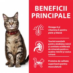 Hill's SP Feline Adult