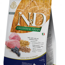 N&D Ancestral Grain Cat cu miel și afine