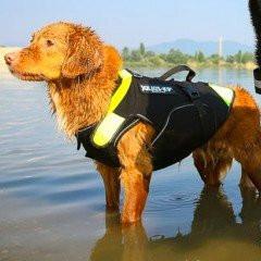 Vesta multifuncționala IDC 3 in 1 pentru câini - Mar. M