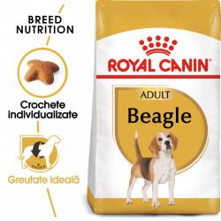 Hrana uscata caini ROYAL CANIN Beagle Adult