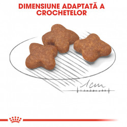 Hrana uscata caini ROYAL CANIN MINI ADULT 8+ dimensiune adaptata a crochetelor
