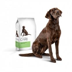 Diamond Care Sensitive Skin Formula Adult Dogs 11.34 Kg