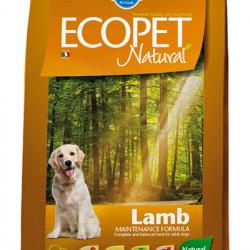 Ecopet Natural Adult Medium Miel 12 kg